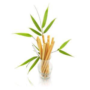 paille_bambou_pot_fleur